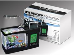 USB Desktop Fish Tank: Betta Bowl: Too small and cold for a betta (or goldfish) but would be great for colorful shrimp or colorful snails! Better to get a larger betta tank and decorate it in a fun theme. Remember, bettas need a 2+ gallon tank and a heater. Go here for some great betta housing ideas: http://www.pinterest.com/familyshopping0/fish-great-betta-tanks/