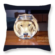 #639 9 Golden Curiosity Throw Pillow by ROBIN LEE MCCARTHY PHOTOGRAPHY