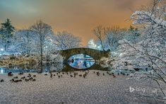 In 1896 the fieldstone arch bridge replaced the Gapstow Bridge, an ornate, High Victorian-style structure. The water beneath is simply known as The Pond. Though man-made, the Pond is neatly integrated into Central Park's urban wilderness and offers a moment of respite from the buzz of the Big Apple.