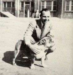 Mississippi State Bulldogs mascot Bully VI (ca. 1947). Two dogs appear to have served the role of Bully VI, sometimes roaming the MSU sidelines together.