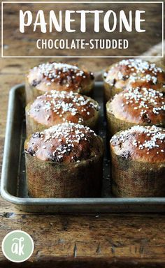 Chocolate-studded Panettone — perfect for the holidays! Scented with vanilla, loaded with dark chocolate, this Chocolate-Studded Panettone is a nice one to have on hand for holiday brunches or teas, and it makes a great gift. Wrapped with baker's twine, it looks festive and fun! #panettone #bread #recipe #diy #chocolate