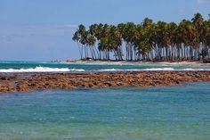 Praia de Carneiros, Tamandaré (PE)