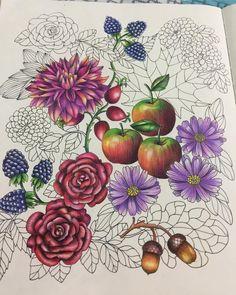 Blomster Mandala Coloring Book More