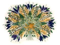 dried flower art - beautiful