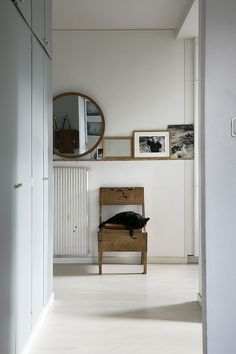 Beautiful and simple entryway with a mint built-in wardrobe, a wooden chair, a round mirror and a black cat.