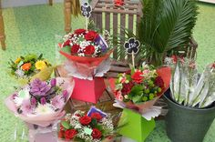 March 2015 Floristry March, Plants, How To Make, Plant, Mac, Planting, Planets, Mars