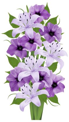 Exotic Flowers Bouquet PNG Clipart Image