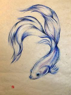 Blue Angel Original 20 x 30 Oil Pastel Siamese Fighting Fish Drawing Beta Fish Drawing, Fish Drawings, Realistic Drawings, Animal Drawings, Pencil Drawings, Art Drawings, Paper Drawing, Manga Drawing, Drawing Art