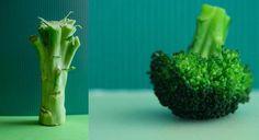 Z broku�ami jest tak jak z grzecznymi ch�opcami � doceniamy ich zalety, ale i tak wolimy drani. Bo takie broku�y, to wiadomo � zdrowe, ale md�e. Wszystko to pozory. Przekonajcie si�, �e z broku�ami da si� zaszale�!