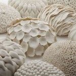 cell-forms-group-laura-mcnamara-ceramics - Laura McNamara