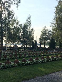 Dolores Park, Travel, Trips, Viajes, Traveling, Outdoor Travel, Tourism