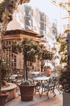 Top 10 Things to do in Avignon, France - An Insider's Guide - Planning a trip to Provence? Find the very best things to do in Avignon, France. France Cafe, Nice France, South Of France, Paris France, La Provence France, The Places Youll Go, Places To Visit, Loire Valley, Destinations