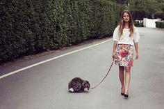 I need a bunny to walk on a leash!