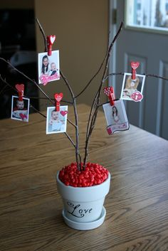 Make a Valentine Tree of Love!! Pin a giftcard to a branch for an added treat.