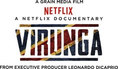 Fantastic netflix documentary. Efforts to save Virunga national park. A mix of french and english commentary. Love.