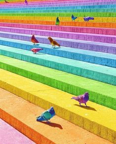 Love Rainbow, Rainbow Art, Rainbow Colors, World Of Color, Color Of Life, Rainbow Images, Rainbow Aesthetic, Rainbow Wallpaper, Colorful Animals