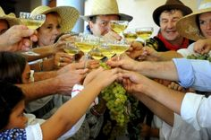 Italian Wines: In Praise of Moscato Bianco - One of Italy's Top White Wines | Italy Magazine