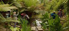 Les jardins perdus de Heligan 4. #gazonsynthetique Plus d'information : http://www.gazonsynthetiqueiag.fr