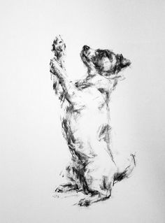 Begging Jack Russell - Print of an original Charcoal Drawing by Justine Osborne at the Stockbridge Gallery Dogs in Art