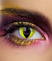 Edit 90 Day Cat Coloured Contact Lenses (Yellow)
