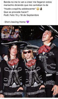 Chad Channing, Sarcastic Laugh, Meaningful Lyrics, Donald Cobain, Band Memes, Gerard Way, Aerosmith, Green Day, The Girl Who