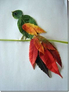picture of leaves for senior residents to make autumn activities Leaf Crafts, Bird Crafts, Nature Crafts, Animal Crafts, Autumn Leaves Craft, Autumn Crafts, Autumn Art, Fall Leaves, Green Leaves