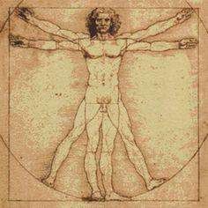 Leonardo da Vinci 'Vitruvian Man'- Counted Cross Stitch Kit - DMC materials - Great cushion size