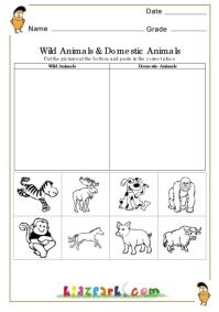 Wild animals and domestic animals Worksheets,EVS Worksheets,Printable Activity Sheets