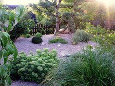 jardin écologique Remplacer le gazon par du gravier pour économiser l'eau