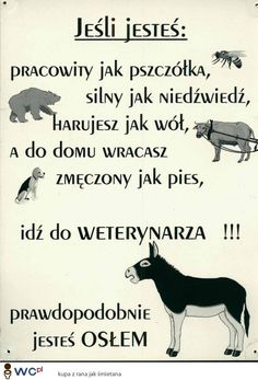 wesołe teksty o życiu - Google-Suche Book Quotes, Life Quotes, Weekend Humor, Funny Memes, Jokes, Ways To Be Happier, Cool Lyrics, Education Humor, Life Motivation