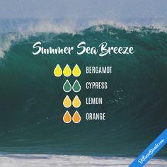 Summer Sea Breeze - Essential Oil Diffuser Blend