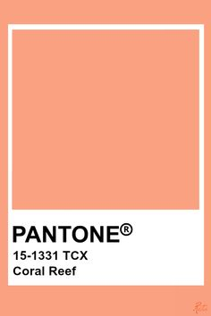 Paleta Pantone, Pantone Orange, Pantone Tcx, Pantone Swatches, Color Swatches, Coral Colour Palette, Colour Schemes, Color Patterns, Pantone Color Chart
