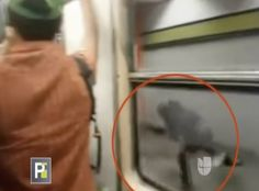 Insólito. Pasajeros Se Lanzan De Un Tren En Movimiento En México