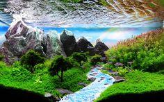 Saiba mais sobre esta incrível técnica que recria paisagens extraordinárias no interior de tanques de água Aquarium Set, Nano Aquarium, Home Aquarium, Aquarium Design, Aquarium Fish Tank, Aquarium Ideas, Aquascaping, Amazing Aquariums, Bonsai Garden