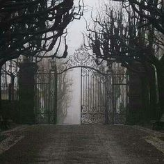 black and white, gate, and dark image Foto Fantasy, Dark Fantasy, House On A Hill, Dracula, Slytherin, Storyboard, Belle Photo, Cemetery, Scenery