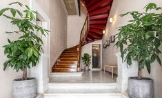 Athens Hotel, Athens Greece, Small Boutique Hotels, Small Entrance, Marble Fireplaces, Neoclassical, Stairways, Modern Architecture, The Neighbourhood
