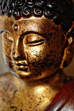 """I teach one thing and one only: that is, suffering and the end of suffering."" ~ The Buddha"