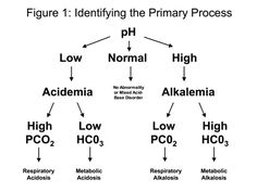 Arterial Blood Gas Analysis #respiratory #rt #rcp