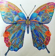 #butterfly #shadeandlight #tropicalwonderland #adultcoloringbook #orange #blue #milliemarotta #potd #tropical