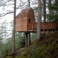 Malcolm Fraser Architects, wooden treehouse housing an artists' studio in Glen Nevis, Scotland.