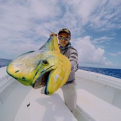 Catch...err Photo of the Day! @phild hughes showing off a huge #MahiMahi! Nice work Phil! #GoProFishing #AnglerApproved # #F4F #sport #photooftheday