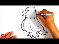 How to Draw an Eagle - Cute - Easy Pictures to Draw This is a funny little drawing of how to draw an eagle. i did it with a marker and tried to make it easy . Easy Pictures To Draw, Simple Pictures, Eagles, Drawings, Cute, Youtube, Eagle, Kawaii, Draw
