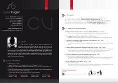 My Curriculum Vitae by ~szwaan on deviantART