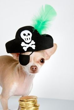 Argh matey! Any sized pirate is good in my book!!  Too cute.