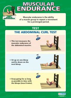 Muscular Endurance Poster