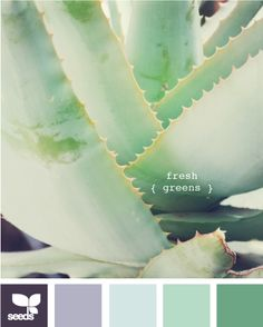 "Just had an ""Ahah!"" moment, before i chose and mix accrylic colors to paint a floral belt or wallet, I need to start with color pallet....cool cactus colors great for a desert scene"