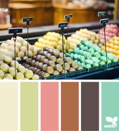 indulgent hues