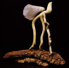 """""""Things you didn't do"""" #driftwoodart #art #driftwood #handmade"""