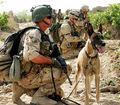 how to become a dog handler in canada army