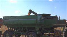 Corn Harvesting in Michigan